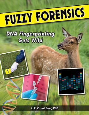 FF Cover (300x388)