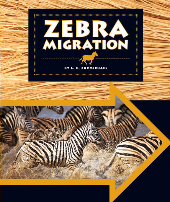 Zebra Migration by L.E. Carmichael