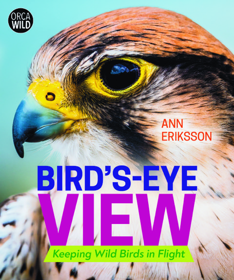 cover of Bird's-Eye View by Ann Eriksson