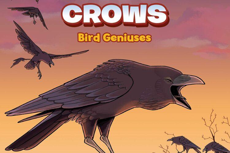 Crows: Genius Birds