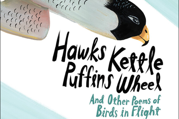 Hawks Kettle, Puffins Wheel, by Susan Vande Griek